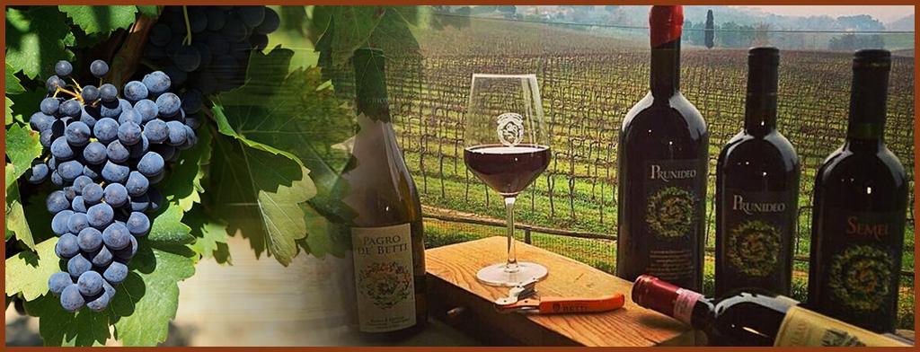 Sublime wijnen bij Koken met Passie